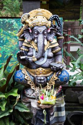 Ganesh ©Mapi Rizzo