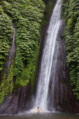 Nella foresta ©Mapi Rizzo